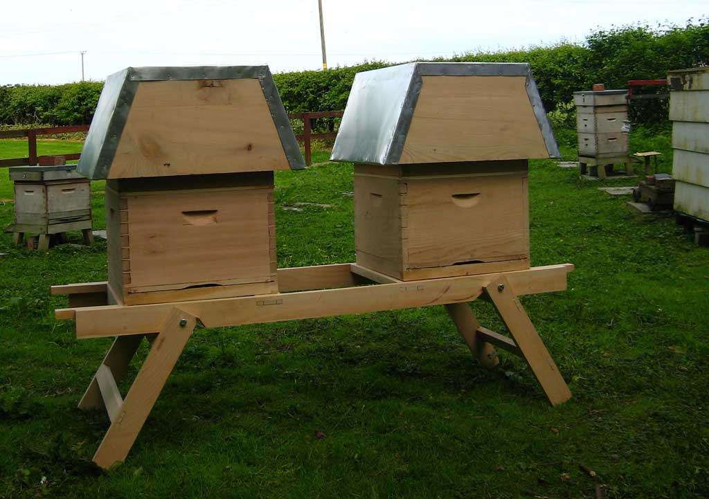 bee-hive-in-situ3