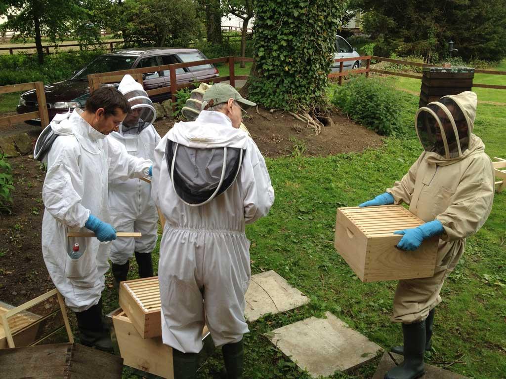 keeping-bees-may-2